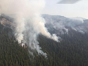 Strawberry Fire backing towards Trail #161 9-6-17 (USFS Photo)